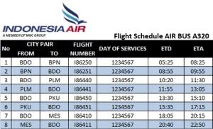 Indonesia Air