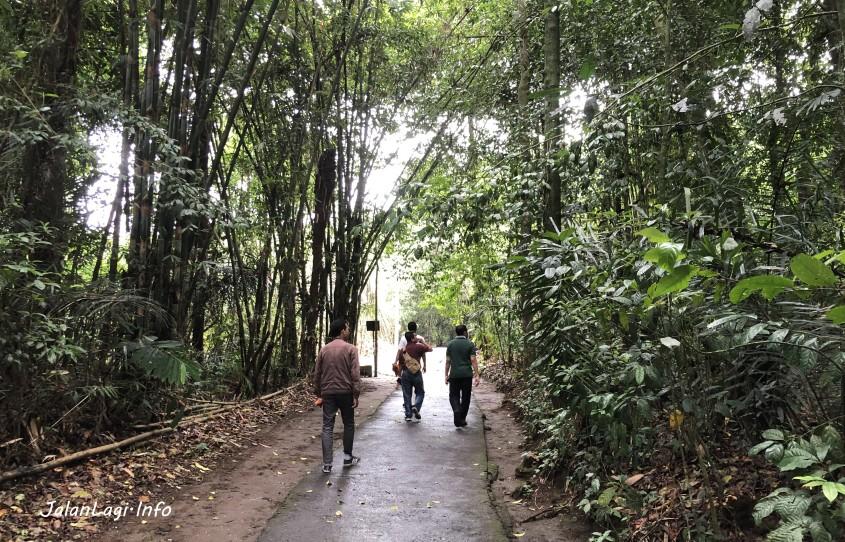 HUtan Bambu Penglipuran