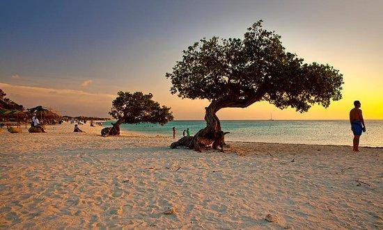 3. Eagle Beach Aruba